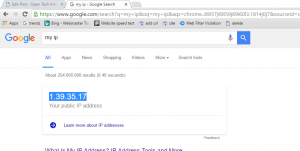 ip address using google